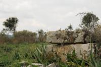 Αρχαιολογικός Χώρος Τριταίας