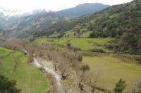 Ποταμός Τευθέας